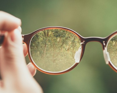 View of lush green forest through eye glasses shot.