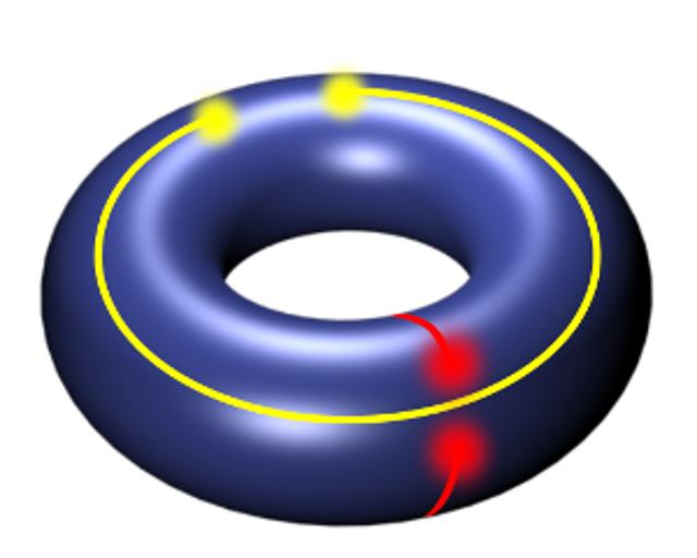 topology-pollmann
